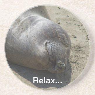 Elephant Seal Coaster coaster