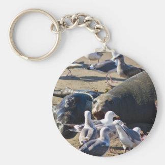 Elephant Seal Keychain