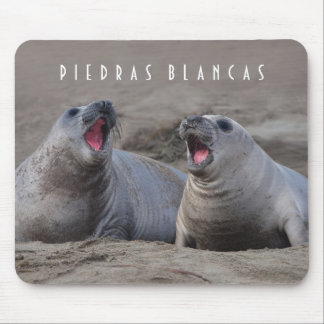 Elephant Seal Pups at Piedras Blancas Mouse Pads