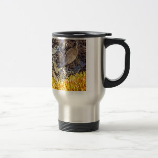 Elephant Seal Trumpeting Travel Mug