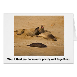 Elephant Seals Bellow in Harmony Card