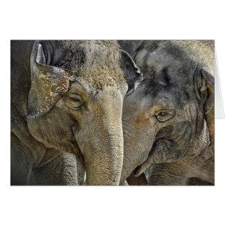 Elephant Sisters Card