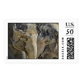 Elephant Sisters Postage