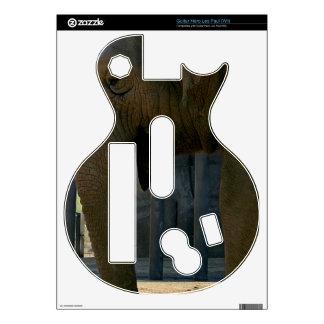 Elephant Guitar Hero Skins
