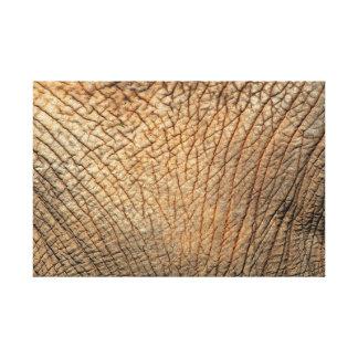 Elephant Skin Gallery Wrap Canvas