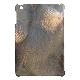 Elephant Skin Cover For The iPad Mini