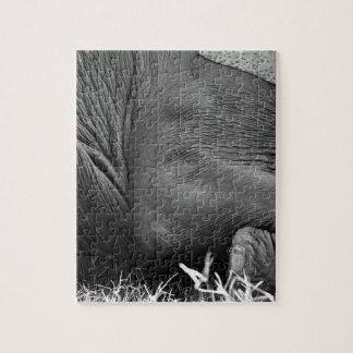 Elephant skin jigsaw puzzle