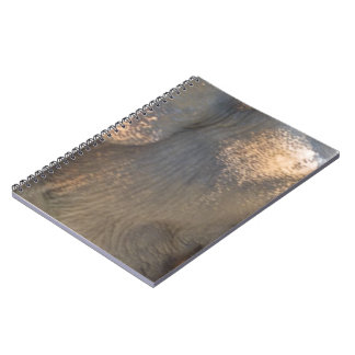 Elephant Skin Notebook