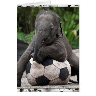 Elephant Soccer Card