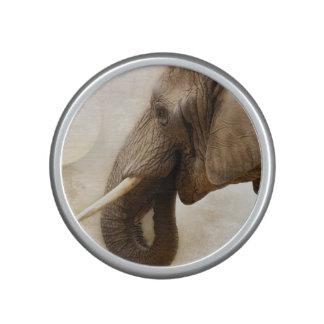 Elephant Speaker