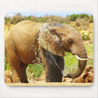 elephant spraying mouse pad