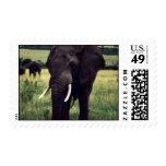 elephant stamp 2
