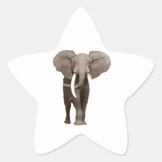 Elephant Star Sticker