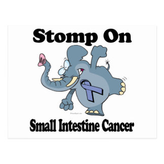 Elephant Stomp On Small Intestine Cancer Postcard