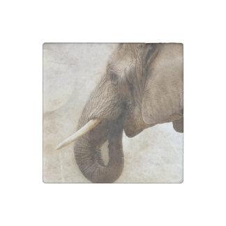 Elephant Stone Magnet