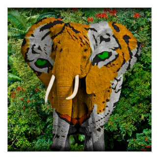 """Elephant Tiger Abstract 20"""" x 20"""" Poster"""
