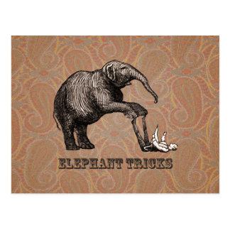 Elephant Tricks - Funny Circus Pachyderm Postcard