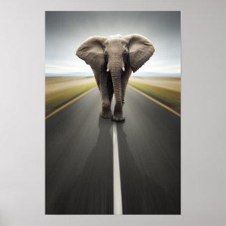 Elephant Trucker Poster