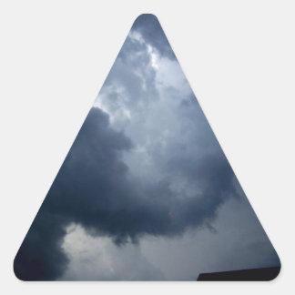 Elephant Trunk Storm Cloud Triangle Sticker