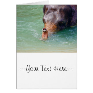 Elephant Trunk Up In Water, Animal Photography Card