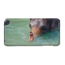 Elephant Trunk Up In Water, Animal Photography iPod Touch 5G Cover