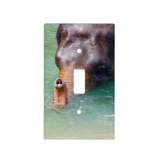 Elephant Trunk Up In Water, Animal Photography Light Switch Cover