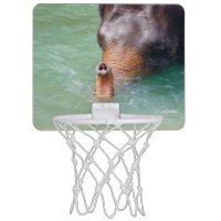Elephant Trunk Up In Water, Animal Photography Mini Basketball Hoop