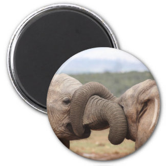 elephant trunks tied up 2 inch round magnet