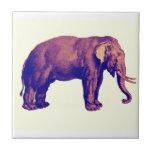 Elephant Vintage Illustration India Animal Antique Tile