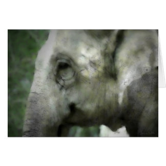 Elephant Walk Card