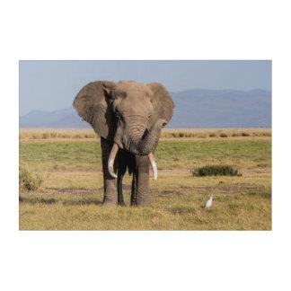 Elephant Waving its Trunk Acrylic Wall Art
