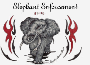 elephant wear t shirts shirt designs zazzle