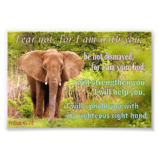Elephant with Isaiah 41:10 Photo Print