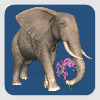 Elephant With Pink Orchid Square Sticker