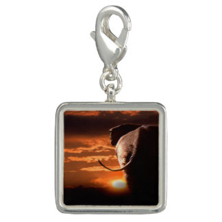 Elephant with Sunset Charms