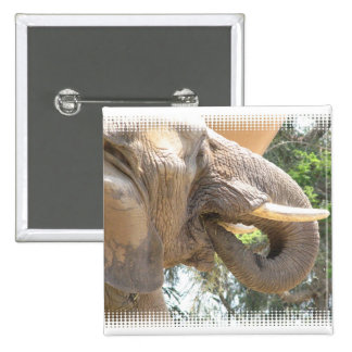 Elephant with Tusks Square Button