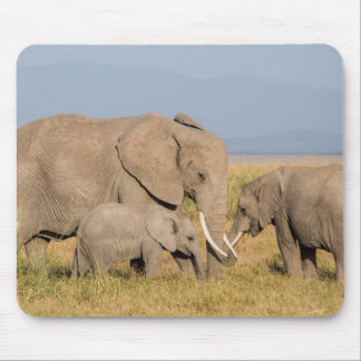 Elephant with Young Mouse Pad