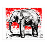 Elephant Woodcut Postcard