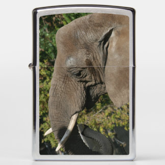 Elephant Zippo lighter