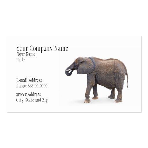 Elephant Zoologist Business Card