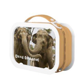 Elephants Lunchbox