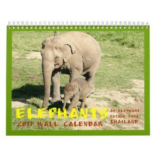 2011 Elephants Calendar