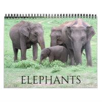 elephants 2021 calendar