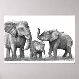 Elephants_3 Póster