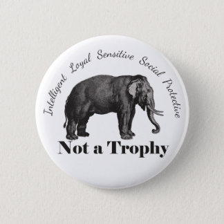 Elephants and Big Game are Not a Trophy Button