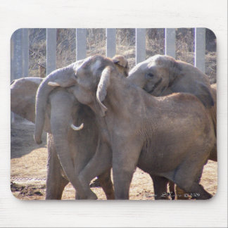 Elephants at Play Mouse Pad