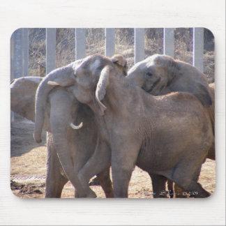 Elephants at Play Mouse Mat