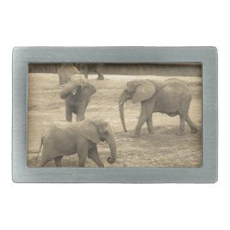 Elephants Belt Buckle - by Fern Savannah