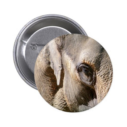 ELEPHANTS PINBACK BUTTONS