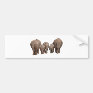 Elephants' Butts - Elephant Family Bumper Sticker